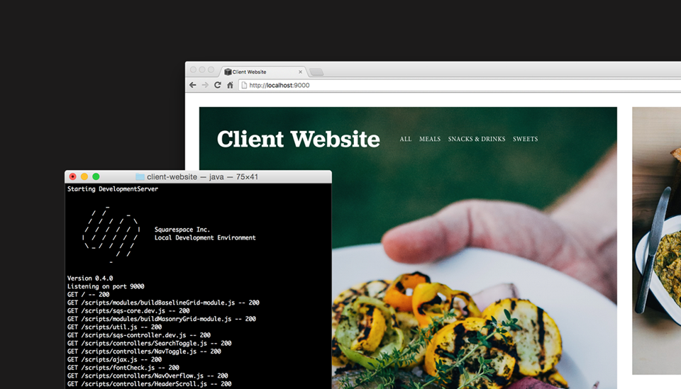 Bubble Squarespace Review Developer Mode Custom Code